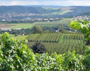 Besenwirtschaft mit Ausblick - Freital Pesterwitz