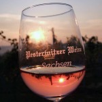Pesterwitzer Weine - Rarität aus Sachsen