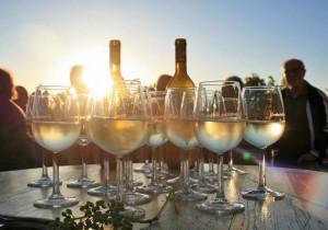 Straußenwirtschaft Pesterwitz, idyllischer Weingenuss