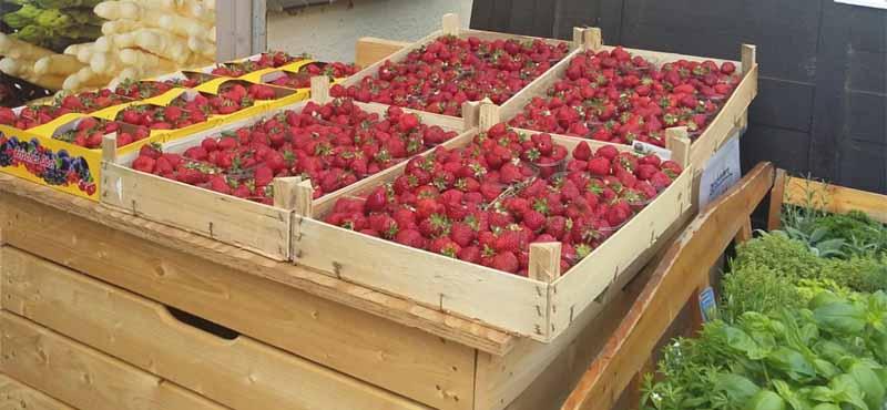 frisches Obst und Gemüse auf Wochenmärkten