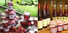 Pesterwitzer Erdbeerprodukte