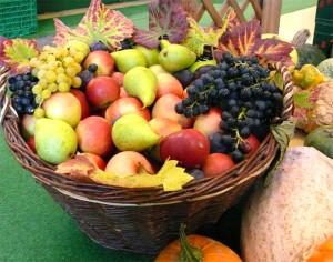 reichhaltiges Obst- und Gemüseangebot im Hofladen Gut Pesterwitz